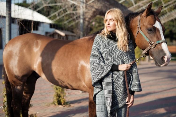 ויש גם סוס שאנחנו מאוד אוהבים