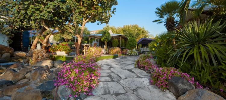כניסה פסטורלית מלאה בצמחייה צבעונית ושבילי אבן כפריים | צילום: יח״צ