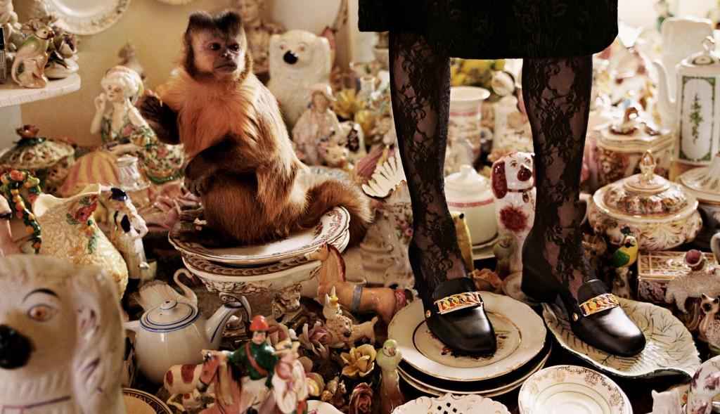נעל לפני אדם אחרי קוף, ככה זה אצלנו