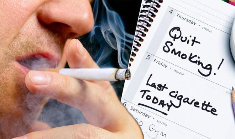 לעשן זה הכי 2015